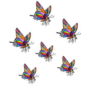 Insekten Falter Schmetterlinge Natur Ökologie