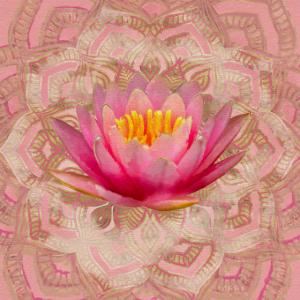Lotus in Mandala Aquarell Gold und Pastellrosa