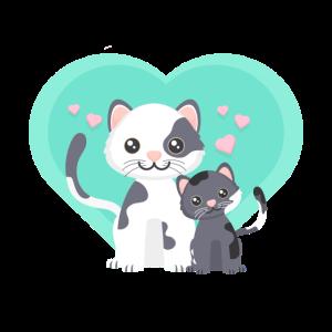 Süßes Katzen Pärchen
