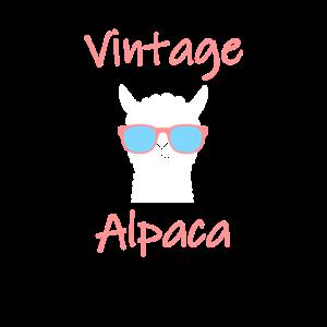 Vintage Alpaka