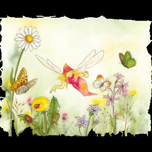 Elfe in der Blumenwiese