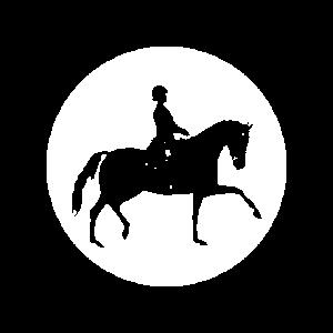 Tunierpferd mit Reiterin