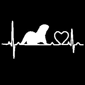 Heartbeat Herzschlag Zwerg Otter Love