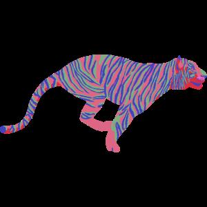 Sibirischer Tiger läuft schnell