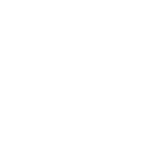 Bee Kind Special animal love nature Love Gift Idea