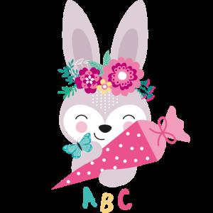 ABC HASE