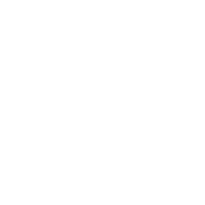 COLORS MAKE NO DIFFERENCE
