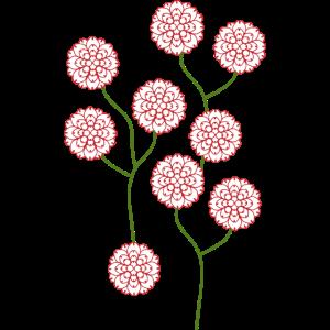 Blumen und Blüten (b)