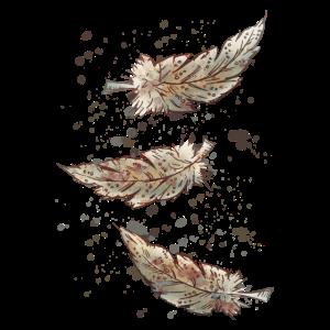 Drei Federn in Brauntönen