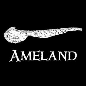 Ameland | Antike Landkarte | Schatzkarte