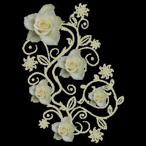 beige Rosen, Ornamente, weiße Rose, Blumen, Blüten