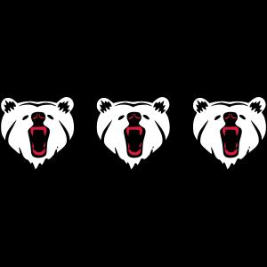 ❤️Drei brüllende Bärenköpfe - Bestes wildes Tier