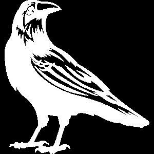Krähen sind Spärlingsvögel