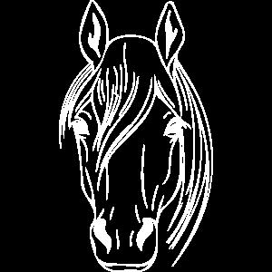 Pferdekopf Vector