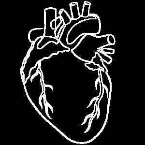 Realistisches Herz One Line Illustration