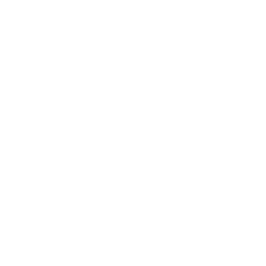 Seepferdchen Meer Ozean