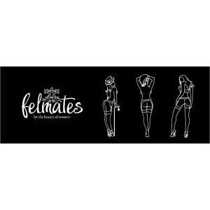 the felmates erotical