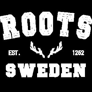Schweden Skandinavien Elch Sweden
