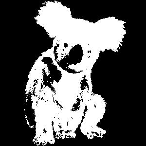 Suesser Koala