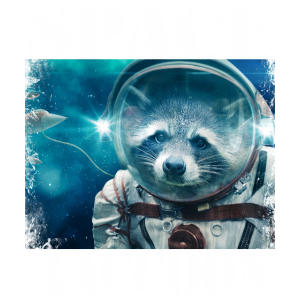 Space Raccoon