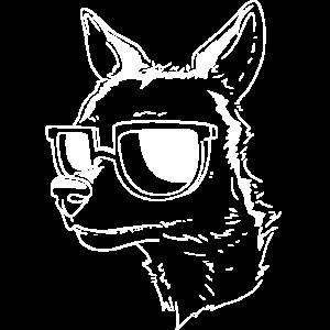Chihuahua Dog Sunglasses