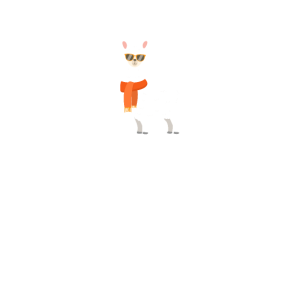 always be yourself except you can be a Llama