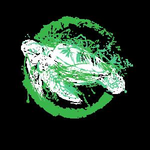Schildkröte Tiere Ozean