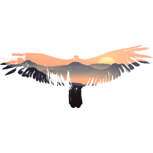 Adler, Vogel, Berge, Tiermotiv, Sonnenaufgang