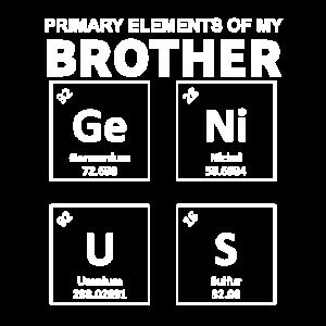 Hauptelemente meines GeNiUS-Bruders