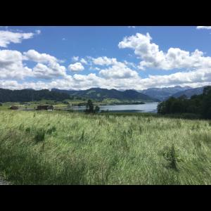 Wanderweg in der Schweiz