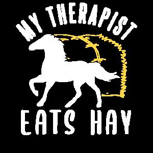 Pferd Therapie