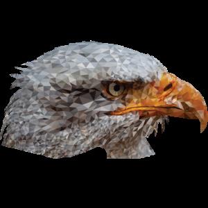 Adler Eagle Polygon Design Geschenk