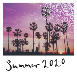 Sommer 2020 Palmen Sonnenuntergang Strand schön