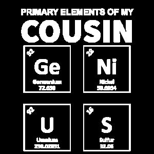 Hauptelemente meines GeNiUS-Cousins