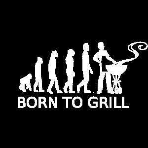 Grillen Griller Evolution Barbeque BBQ Grill