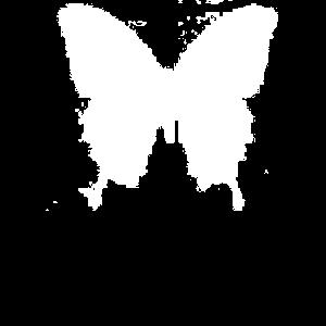 Schmetterling Kind Kinder Butterfly Sommer