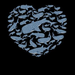 Walhai Geschenkidee Wale Hai Shirt Kinder Walhai