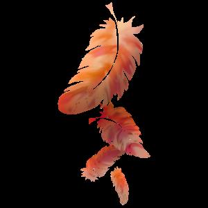 2020 06 22 rot-orange Federn