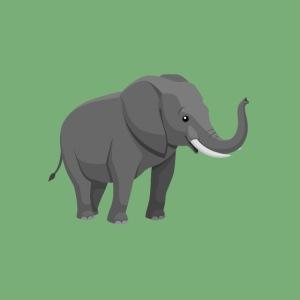 Elefantenklasse222