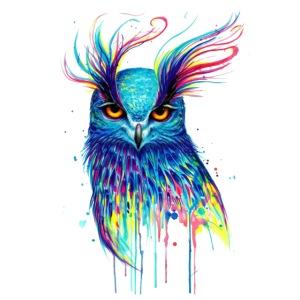 Buho multicolor