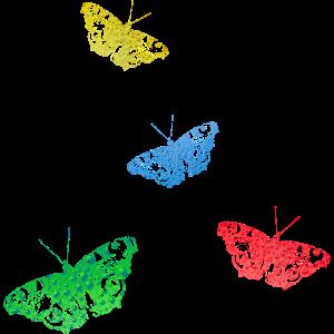 Schmetterling - tiere - natur - schmetterlinge