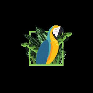 Papagei Papageien Shirt Wellensittich Parrot Pirat