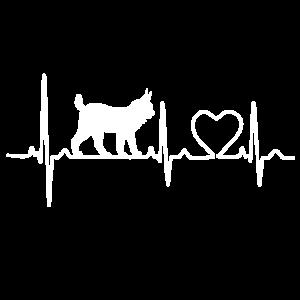 Luchs - heartbeat Herzschlag EKG Puls