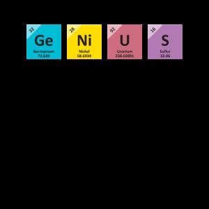 Genie | Hauptelemente von mir