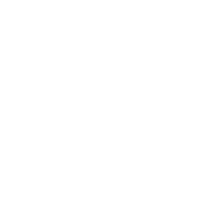Papa Bear - Dad