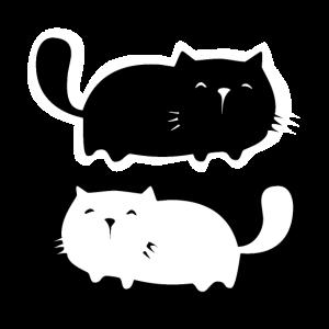Schwarze Katze - weißer Kater - black-white Cats