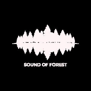 Sound Of Forest Wald Natur Schatten See Spiegel