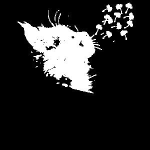 Pusteblume Katze Löwenzahn Schöne Blume Geschenk