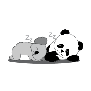 Gute Nacht Panda Koala Pyjama Lustig Geschenk