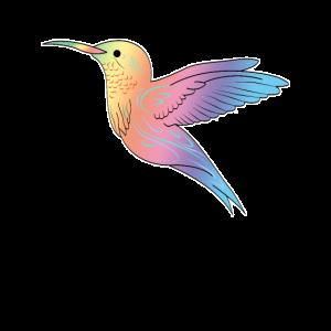 Kolibris Vogel Illustration Geschenk